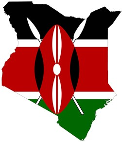 LES CLES DU DECOLLAGE NUMERIQUE DU KENYA : PARTIEI